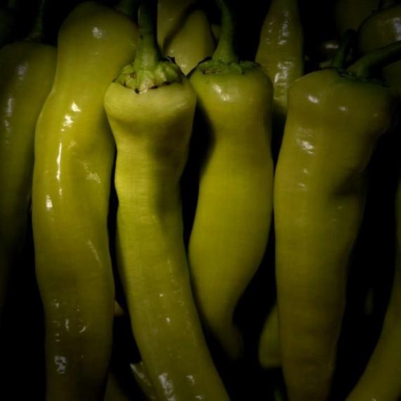 Πιπεριές Κέρατο Κρήτης ή Αγ. Γιώργη Βεροίας