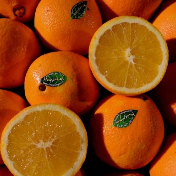 Πορτοκάλια Κρήτης ή Πελοποννήσου(Merlin,Valencia.New Hall)