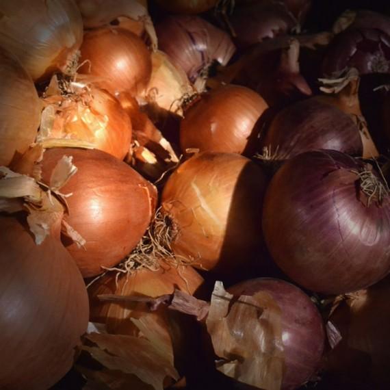 Κρεμμύδια-Κοκκινα-ή-Άσπρα-Βοιωτίας