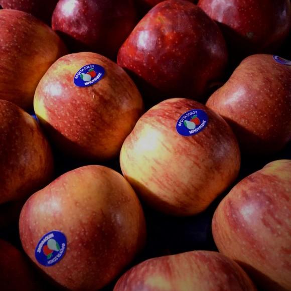 Μήλα Τζόνα Σοχού ή Καστοριάς