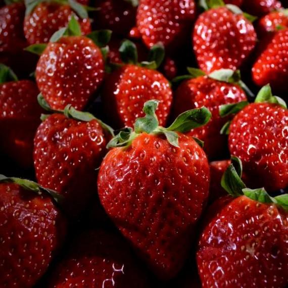 Φράουλες Μανωλάδας